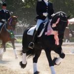 Eeltsje F. & Nicole Glusenkamp - 2006 USDF/Markel Young Horse Championships - 6yr Olds - 5th in the U.S.!