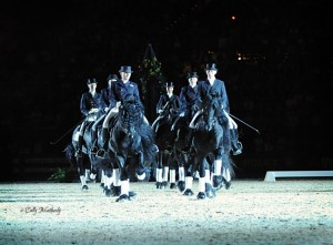 2010 WEG - Friesian Train Performance