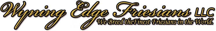 Wyning Edge Friesians, LLC